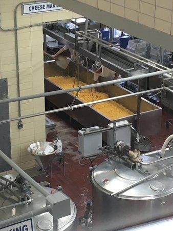Babcock Hall Dairy Store : photo0.jpg