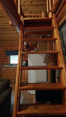 Cedar Lodge & Settlement: IMG_20160709_155413_large.jpg
