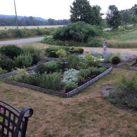 Savona, NY: Herb garden