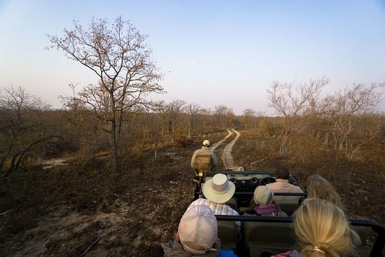 Simbavati River Lodge: Easier to spot wildlife when it's dry!