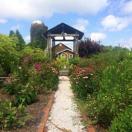 Lavender Fields Farm: beautiful, beautiful, beautiful