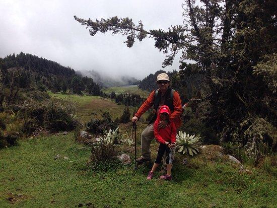 Andean Region, Venezuela: photo3.jpg