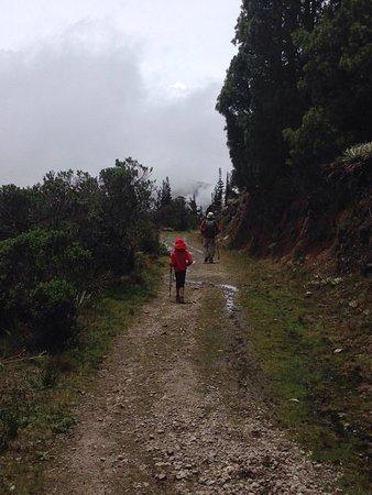 Andean Region, Venezuela: photo4.jpg