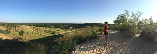 Saugatuck, MI: Panoramic photo of the dunes