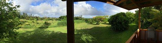 Pahoa, Χαβάη: Kitchen view!
