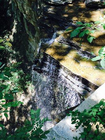 Clifty Falls State Park-bild