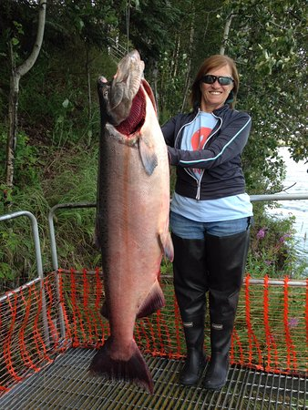 Alaska Fishing Lodge - Soldotna Bed and Breakfast Lodge : My wife and her 56 lb king salmon caught with a guide from the B&B this year!