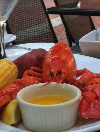 North 26 Restaurant and Bar: Maine Lobster Special