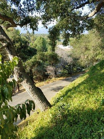 South Pasadena, Kalifornien: 20160801_174203_large.jpg