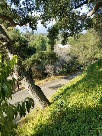 South Pasadena, Californien: 20160801_174203_large.jpg