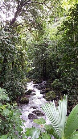Parrita, Costa Rica: 20160803_085323_large.jpg