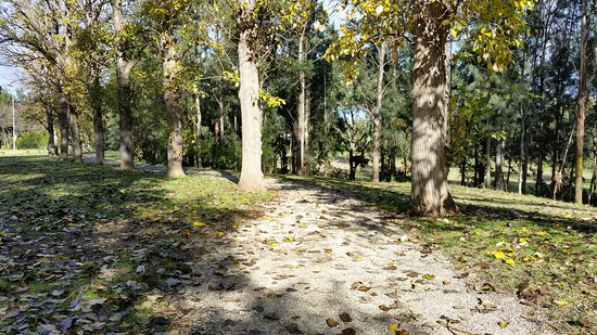 One of the paths through the Picton Botanical Gardens