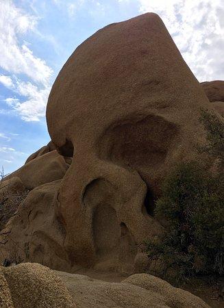 Skull Rock: photo0.jpg