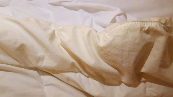 Comfort Inn Cambridge: bed linens