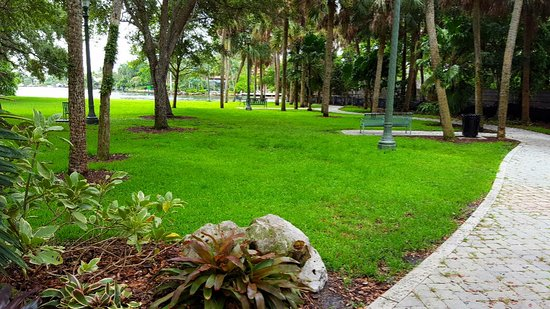 colee hammock park  shaded jungle queen view from coolee hammocks park   picture of colee      rh   tripadvisor