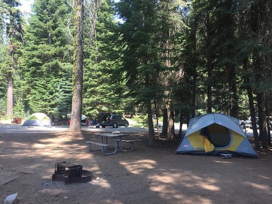 Dorst Campground: #028  Near bathrooms Neighbors within 20 feet each way Nice flat/leveled ground for tent!