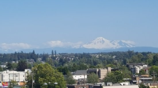Coast Hotel & Convention Centre: Mount Baker - view from our huge private deck