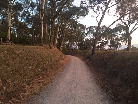Lilydale to Warburton Rail Trail