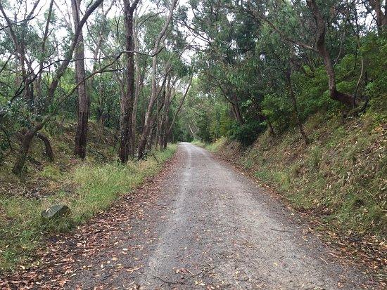 Lilydale, Australien: photo6.jpg