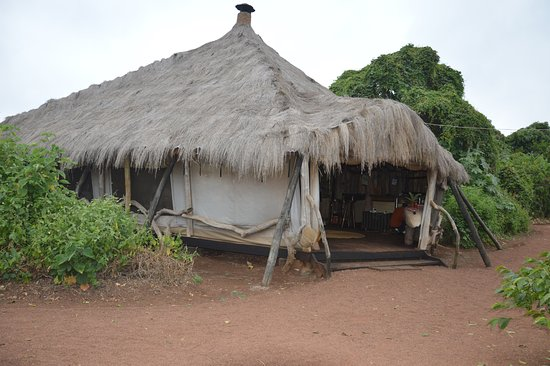Foto de Crater Forest Tented Camp