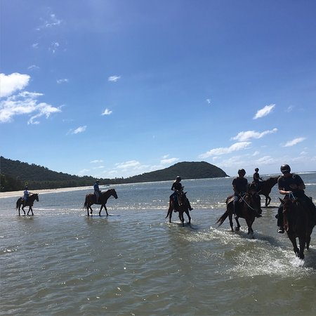 Cape Tribulation Horse Rides: Amazing experience at cape tribulation horse ridding.