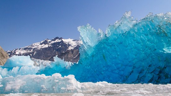 Gustavus, AK: Incredible ice bergs can be found in the seldom-seen McBride Glacier!
