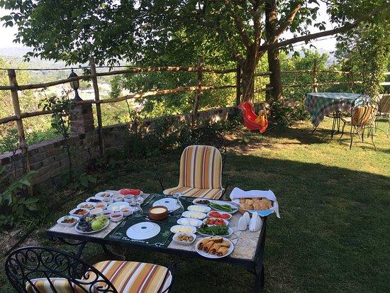 Kirazli, Turchia: Otelden görüntüler.