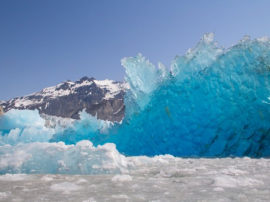 Gustavus, AK: The incredible blue ice of Glacier Bay!