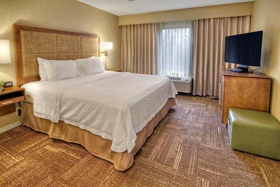 เฟลตเชอร์, นอร์ทแคโรไลนา: King Suite Guest Room