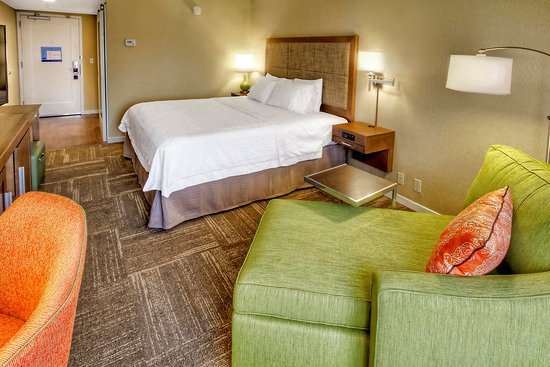 Fletcher, Carolina del Norte: Standard King Guestroom