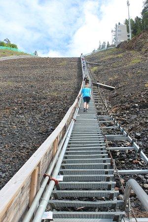 Vikersund, นอร์เวย์: first half of the 1078 steps