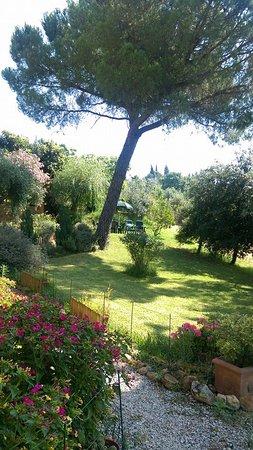 Il Colombaiolo: 享用早餐的花園