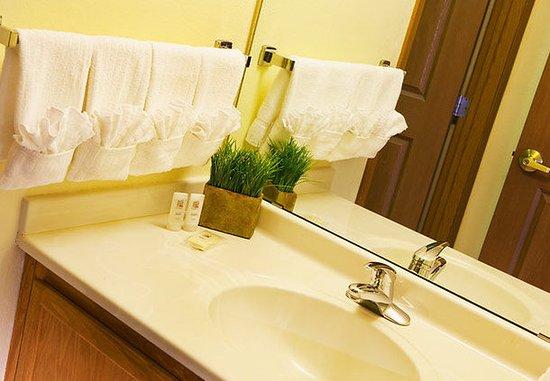 TownePlace Suites Milwaukee Brookfield : Suite Bathroom
