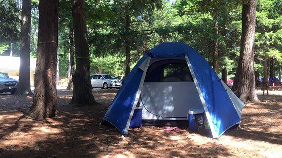 Old Orchard Beach Campground: photo0.jpg