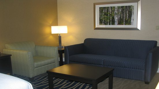 Holiday Inn - Concord Downtown: A sleeper sofa that's a great couch and a great bed!