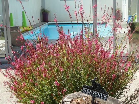 Meigne, France : piscine