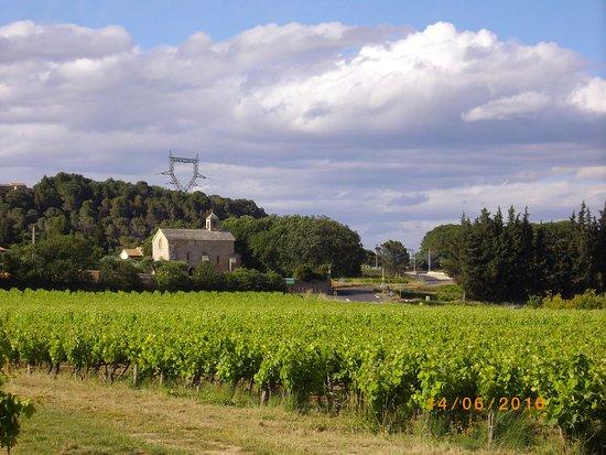Gard, Frankrike: chapelle et vigne