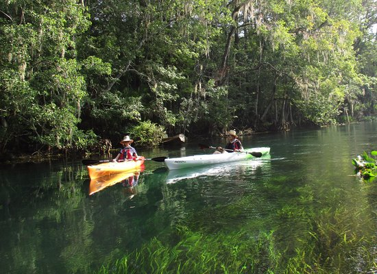 Eustis, Floryda: Crystal clear and loaded with wildlife