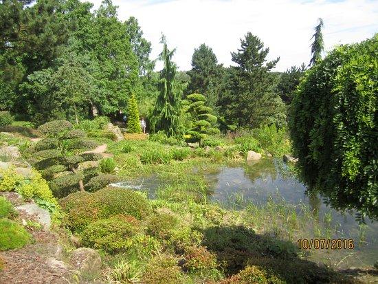 Jardin photo de mondo verde landgraaf tripadvisor for Jardin verde