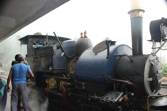 Sinclairs Darjeeling : Darjeeling Himalayan Rail Road for a Joy Ride.