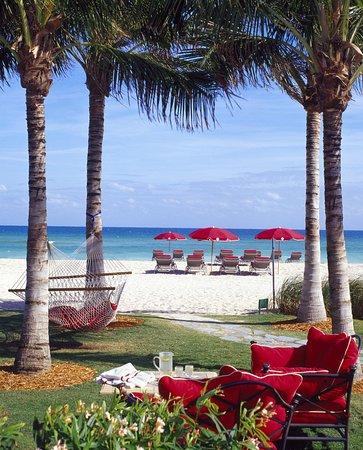 Sunny Isles Beach, FL: Hammocks on the Beach