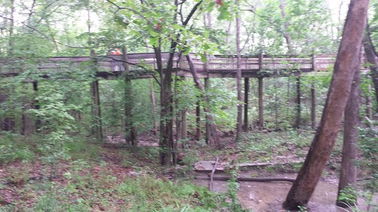 Jackson, MS: good walkways, but lots of wooden stairs to climb