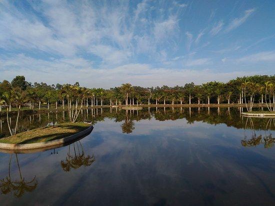 Estancia Arvore da Vida: Lago com caminhada