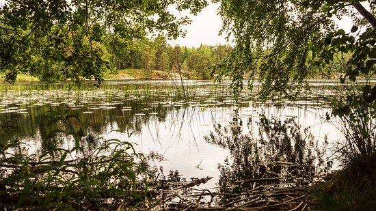 Saltsjobaden, Zweden: Tattby Naturreservat