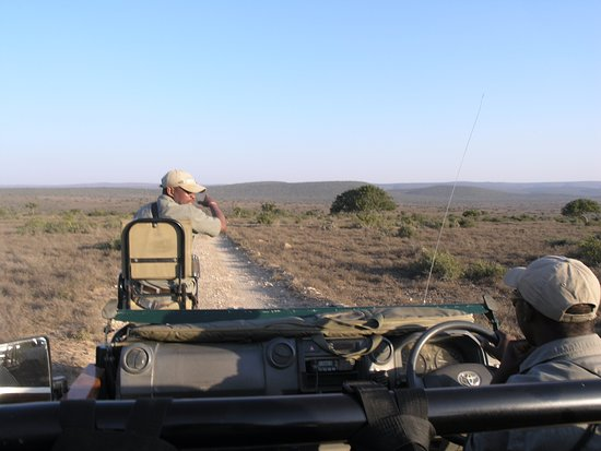 Kwandwe Private Game Reserve, Güney Afrika: Ranger and traker