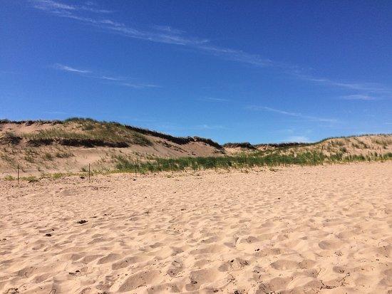 Brackley Beach Resmi
