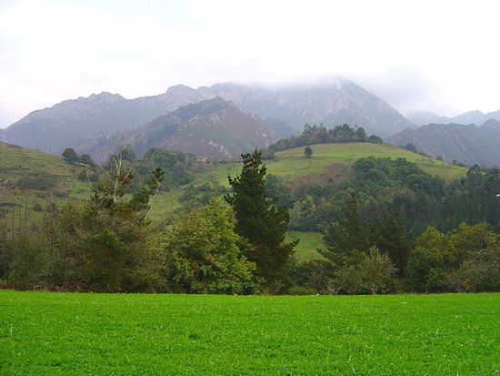 Campas verdes en Peruyes