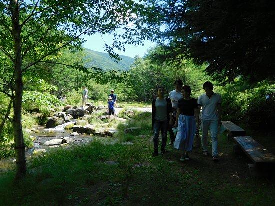 Tateshina Gosensui Shizenen: 御泉水公園を家族で散歩