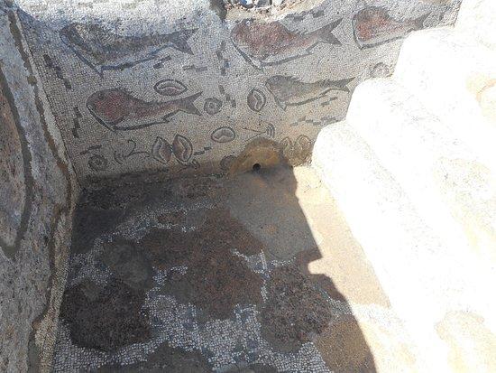 Mozaiek tegels van een badhuis.