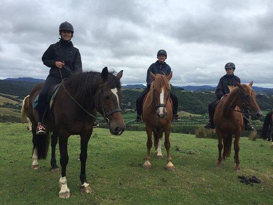 Coromandel Peninsula, Neuseeland: Great